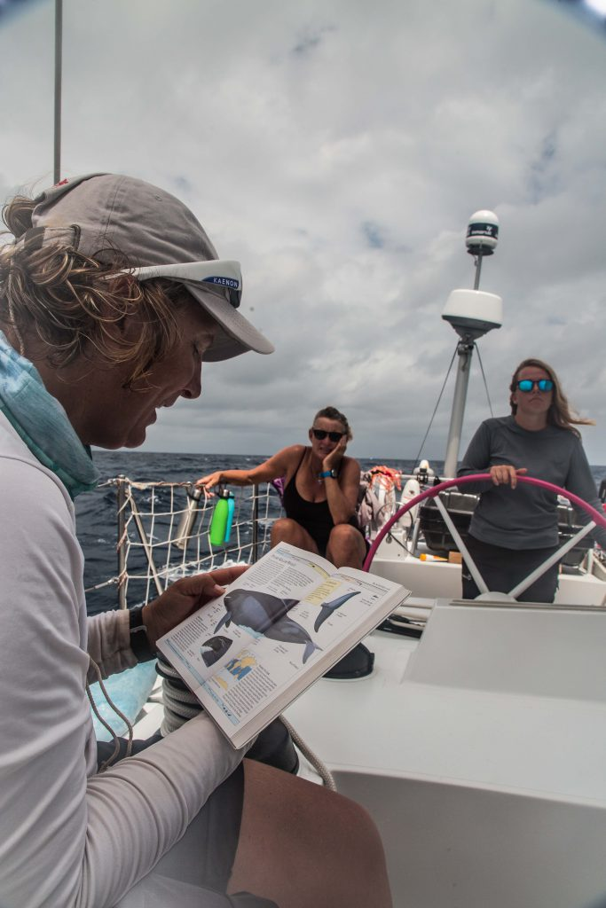 A lady reading from a book on the left. She is the skipper, Sharon. Two sailors behind listen, one at the helm. The book has photos to identify sea mammals.